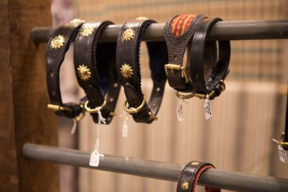 Dog Collars in Shop