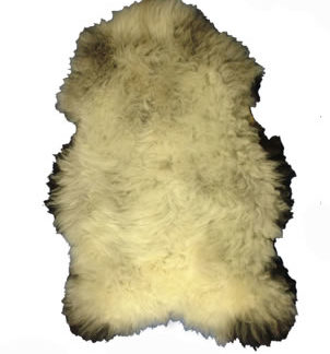 Rare Breed Badger Face Sheepskin