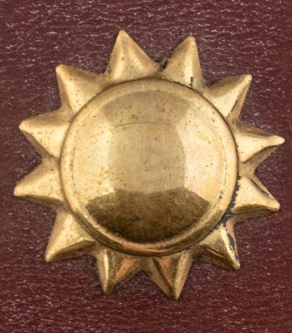 Brass Stud Bull Star Detail