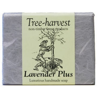Lavender Plus Soap