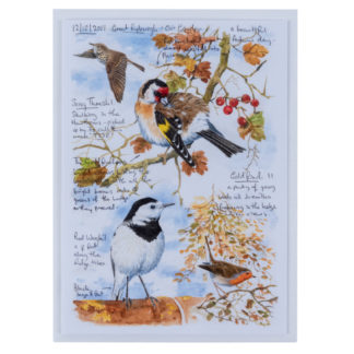 Goldfinch-and-Pied-Wagtail-Greeting-Card