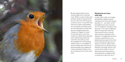 The Robin Book Back Cover Inside Pages 2