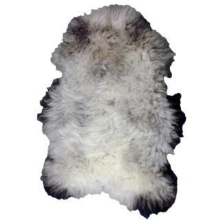 Rare Breed Badger Face Sheepskin