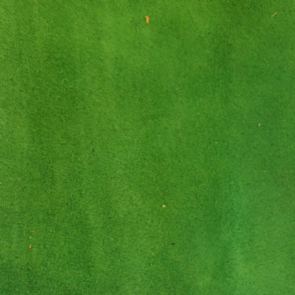 Emerald Green Suede Lining