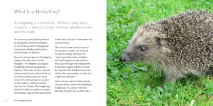 The Hedgehog Book Inside Pages 1