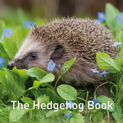 The Hedgehog Book FC