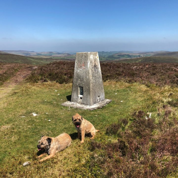 Trig point